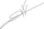 Erwin van Veen handtekening